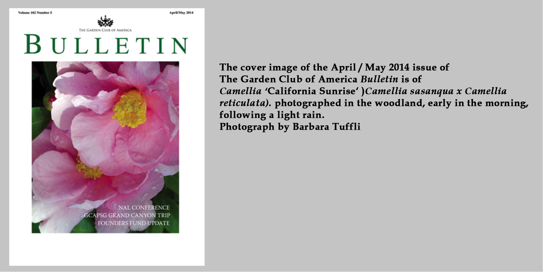 Bulletin April / May 2014
